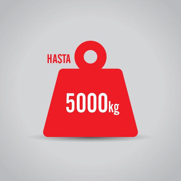 montacargas hasta 5000 kg