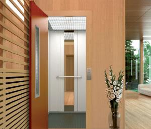 plataforma elevadora vivienda unifamiliar